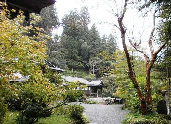 kentokuji18.jpg