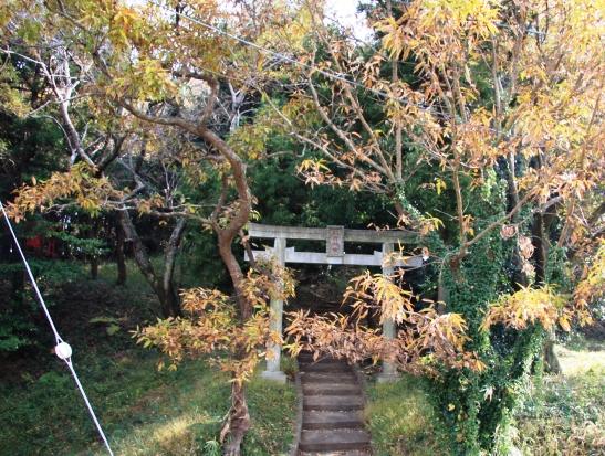 kihara02.jpg