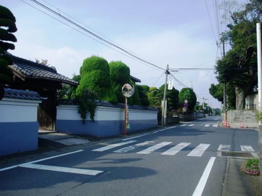 koibuchi01.jpg