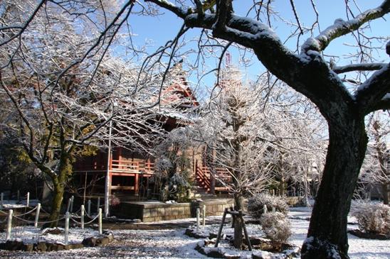 kokubunji01_20120124094204.jpg