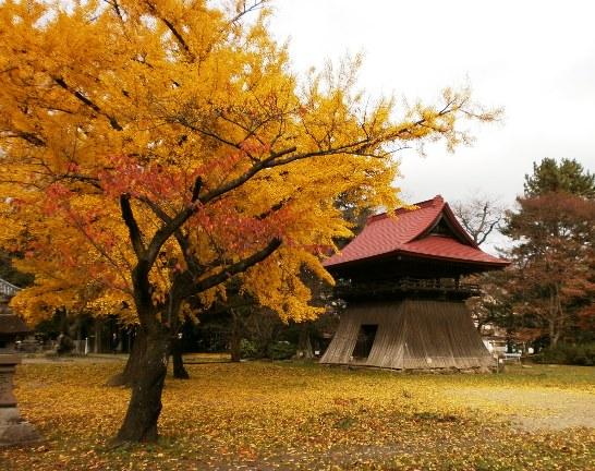 kokubunji24.jpg