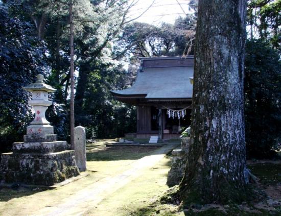 koyasu04.jpg