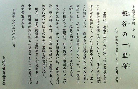 matsunamiki04.jpg