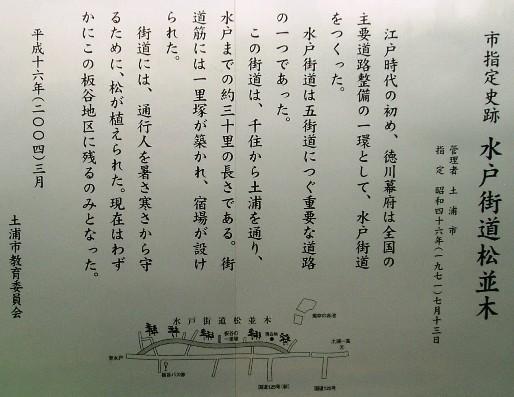 matsunamiki06.jpg