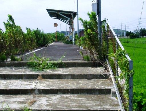 ogawako02.jpg