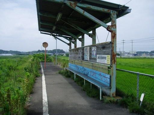 ogawako03.jpg