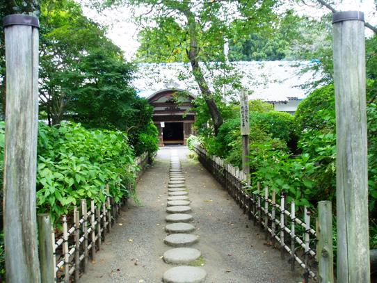 ooyama04.jpg