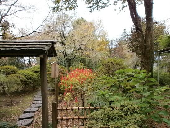 ooyama05_20111030113421.jpg