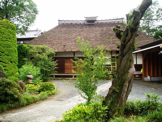 sakuraazuma02.jpg