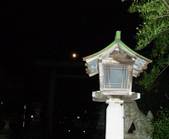 tsuki05.jpg