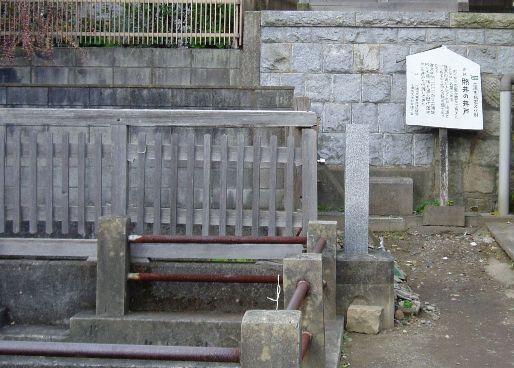 zennouji04.jpg