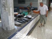 H230815moknine魚市場2