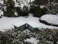H240229名残雪