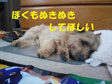 2011_0619_104307-P1050400a.jpg