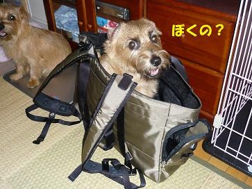 2011_0826_175906-P1050510a.jpg