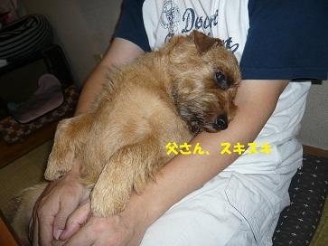 2011_0902_172345-P1050528a.jpg
