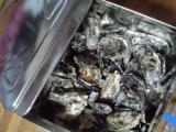 091103牡蛎ガンガン焼き