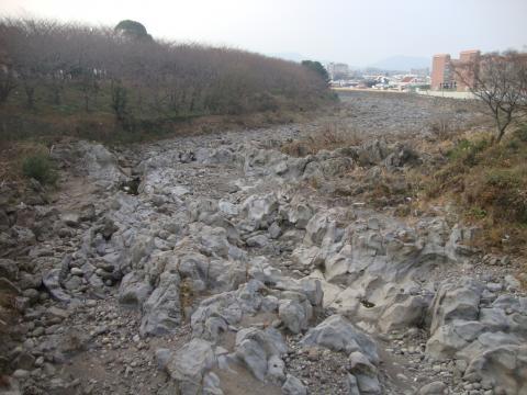 済州市の川