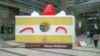花よりケーキ?!