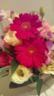 20101017花