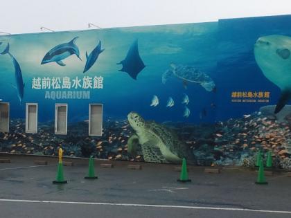 110428_越前松島水族館