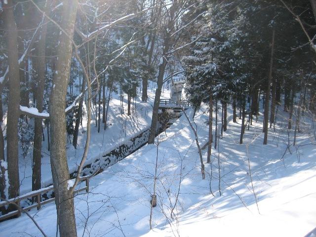 冬の円山4