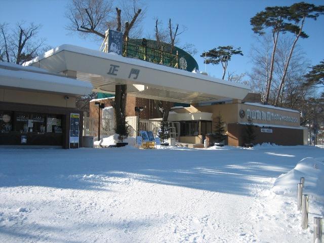 冬の円山7