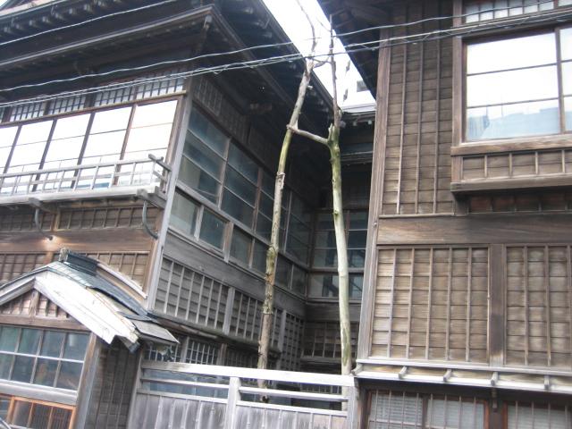 小樽建物3