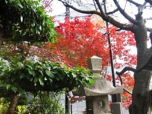 神戸北野天満神社2