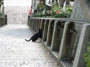 神戸北野天満神社4
