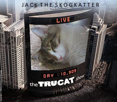 jack-the-truman