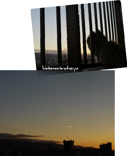 連結画像-夕陽110625