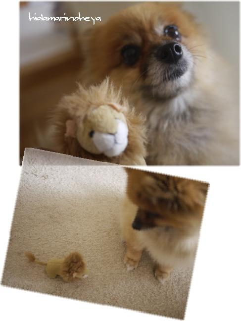 ゆめライオン