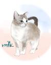 milk-04-2-s.jpg