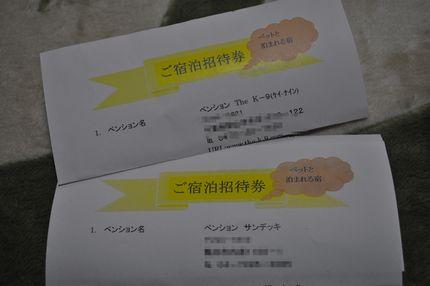 2011.5.22 マザーCUP 246