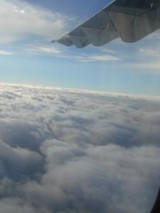 タロム航空からの風景