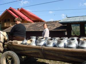 牛乳売りの馬車