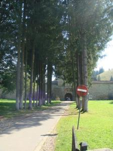 スチェヴィツァ修道院へ続く道