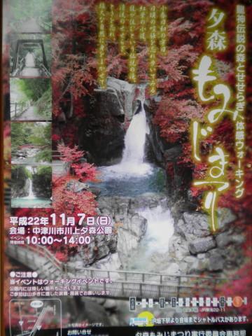 もみじ祭りポスター