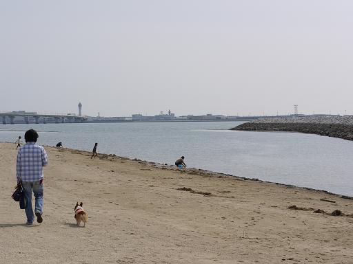 りんくう海浜緑地4.18