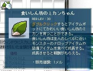 5_20111101132639.jpg