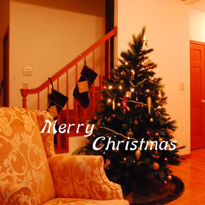 christmas2010-1