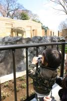 いわき温泉-動物園2
