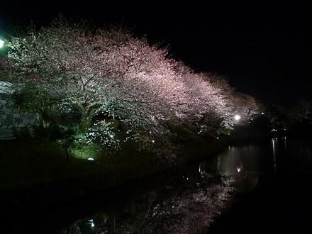 福岡城さくらまつり1