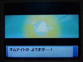 DVC00002_convert_20091212001511.jpg