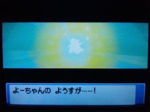 DVC00040_convert_20091203221710.jpg