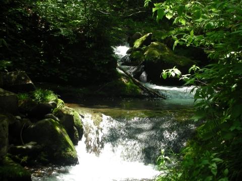 2010年②川又温泉7月20