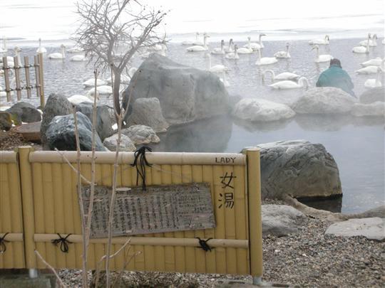 2010年3月 屈斜路湖湯巡り コタンの湯③