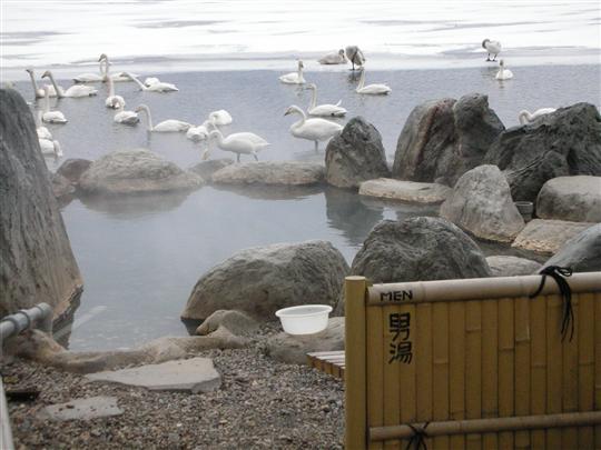 2010年3月 屈斜路湖湯巡り コタンの湯④