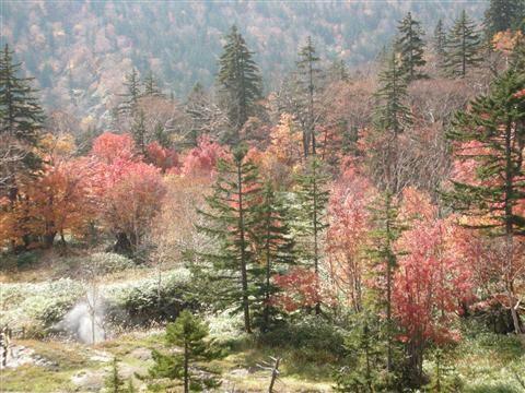 2010年10月 大雪高原温泉10